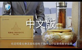 低频脉冲电子治疗仪(中文版)